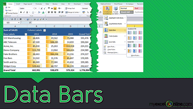 Conditionally Format a Pivot Table With Data Bars