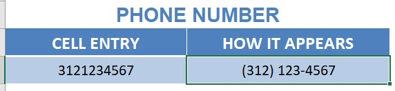Format Cells: Special Numbers | MyExcelOnline