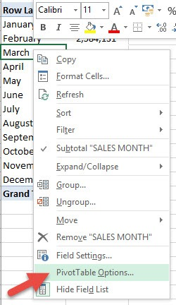pivot table options