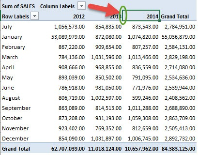 Sort an Excel Pivot Table Manually