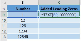 Add Leading Zeros in Excel