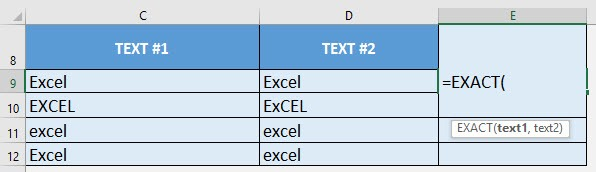 EXACT Formula in Excel