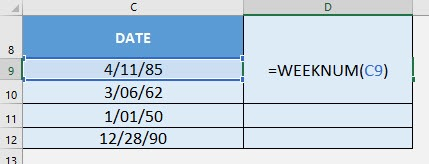 WEEKNUM Formula in Excel