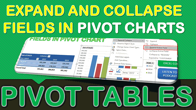 Expand and Collapse Fields in Pivot Chart in Excel